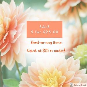 5 items for $25 (Any items listed $15 or less)